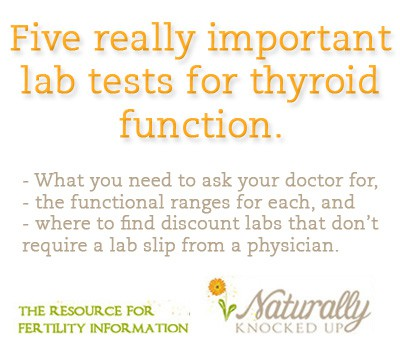 thyroid tests you need