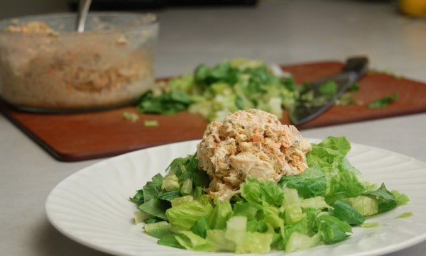 allergy friendly chicken salad