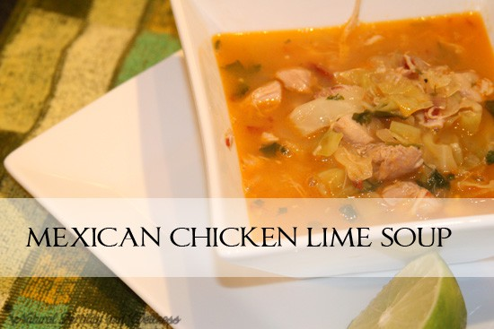 mexican chicken lime soup print author donielle recipe type soup ...
