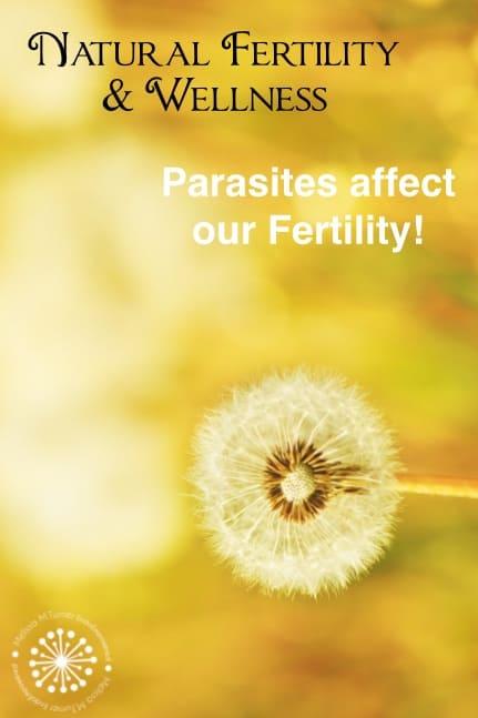 endometriosis and parasites