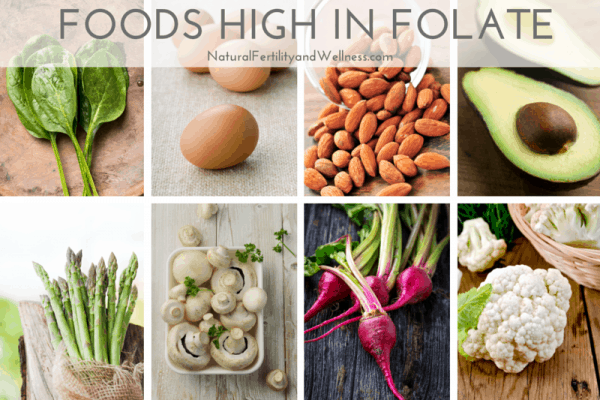 foods high in folate